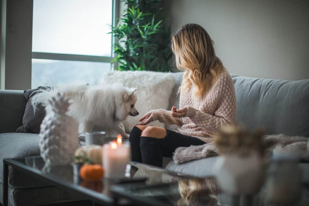 Best Unlimited Internet Plans For Home