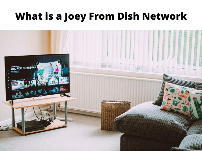 What is a Joey From Dish Network