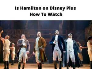 Hamilton on Disney Plus