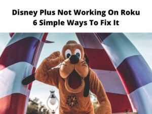 Disney Plus Not Working On Roku 6 Simple Ways To Fix It