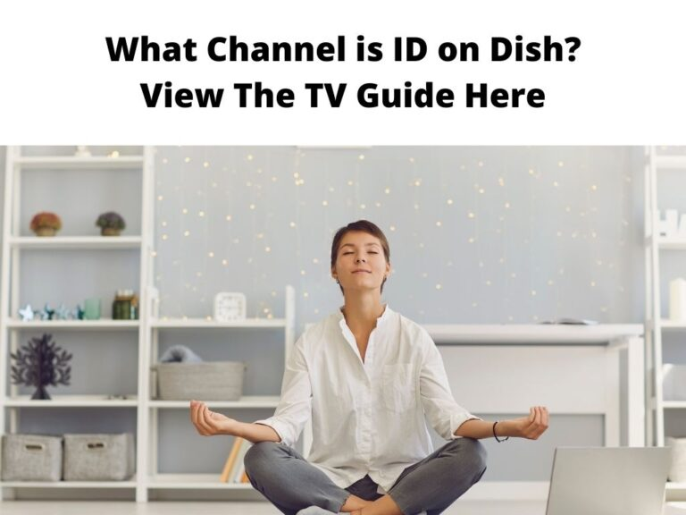 What Channel is ID on Dish