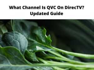 What Channel Is QVC On DirecTV Updated Guide
